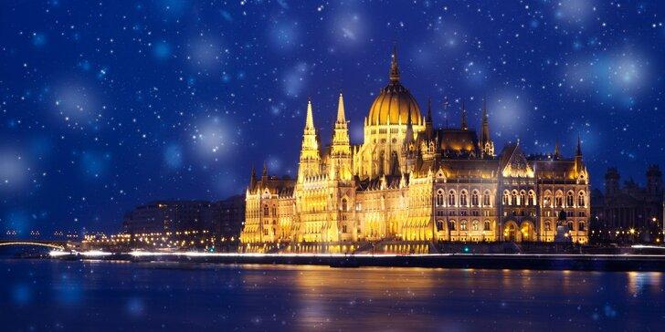 Prehliadka vianočnej Budapešti a Tropicaria so sprievodcom