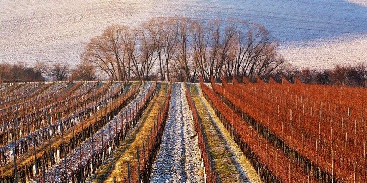 Zážitkový vinársky pobyt na Slovácku: famózne víno, degustácie aj wellness