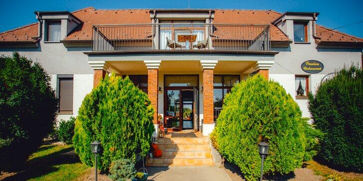 Pobyt v Penzióne Platan: rodinné apartmány aj zvýhodnené podmienky pre deti!