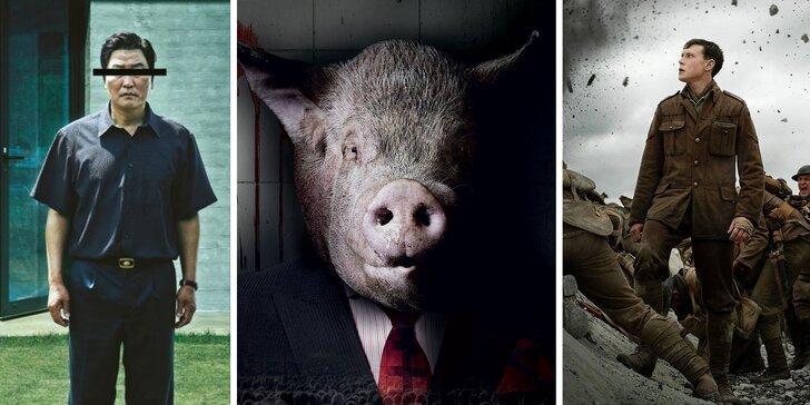 Užite si filmové predstavenia v Artkine v Zrkadlovom háji celý rok 2020