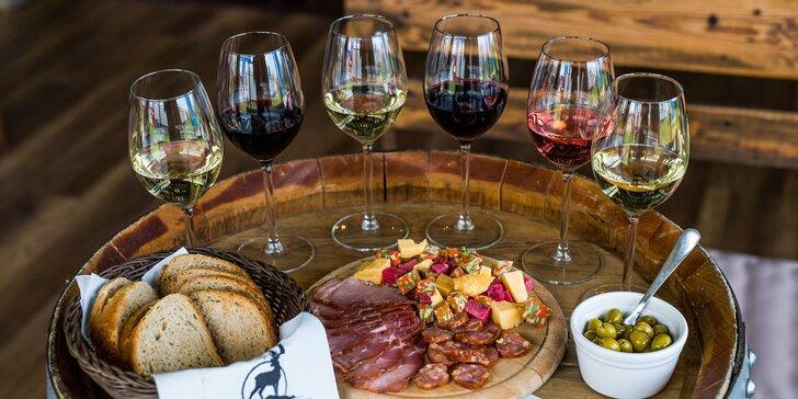 Privátna degustácia prémiových slovenských vín v Dama Dama