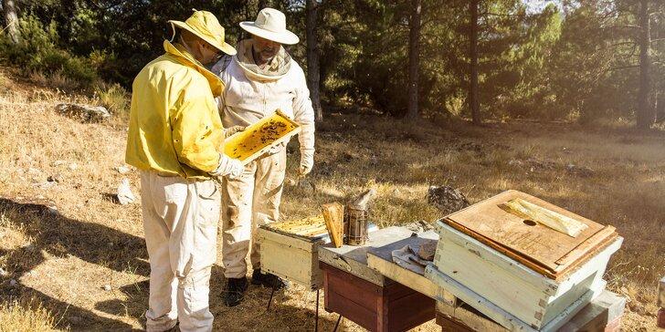 Jedinečný včelársky zážitok na včelej farme MaryBee!