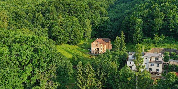 Romantický wellness pobyt vo Ville Carpe Diem*** v Trenčianskych Tepliciach