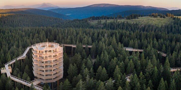 Pobyt v kúpeľnom meste Zreče: polpenzia, wellness, lyžovanie na dosah a množstvo atrakcií vrátane chodníka v korunách stromov