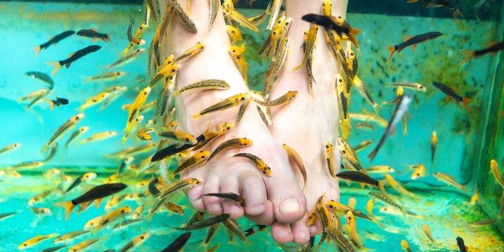 Najlepšia prírodná biopedikúra rybičkami Garra rufa