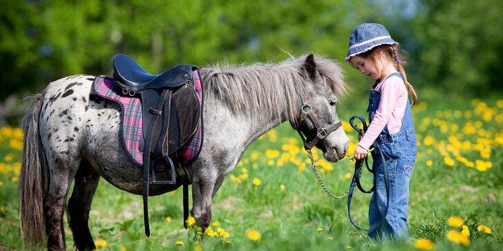 Užite si krásy Kysúc z chrbta koníkov alebo poníkov s Happy Horse Raková
