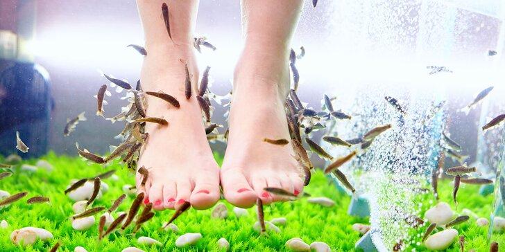 Rripravte svoje nohy na leto! BIO pedikúra a masáž rybičkami Garra Rufa