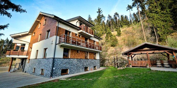 Pobyt v Demänovskej doline v luxusných apartmánoch Vila Vista s privátnou exteriérovou kaďou a infrasaunou