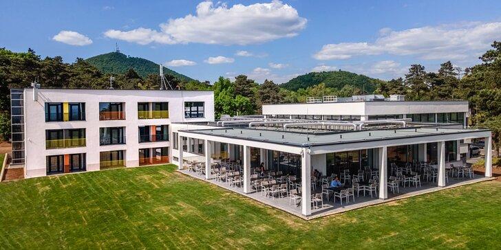Pobyt v maďarskej oblasti Tokaj: polpenzia, adrenalínový park či degustácia vína