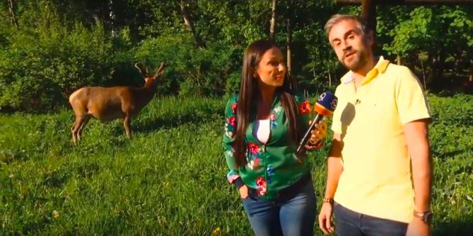VIDEO | Zľavomatová polícia: #Penzión Teniscentrum v Tatranskej Lomnici