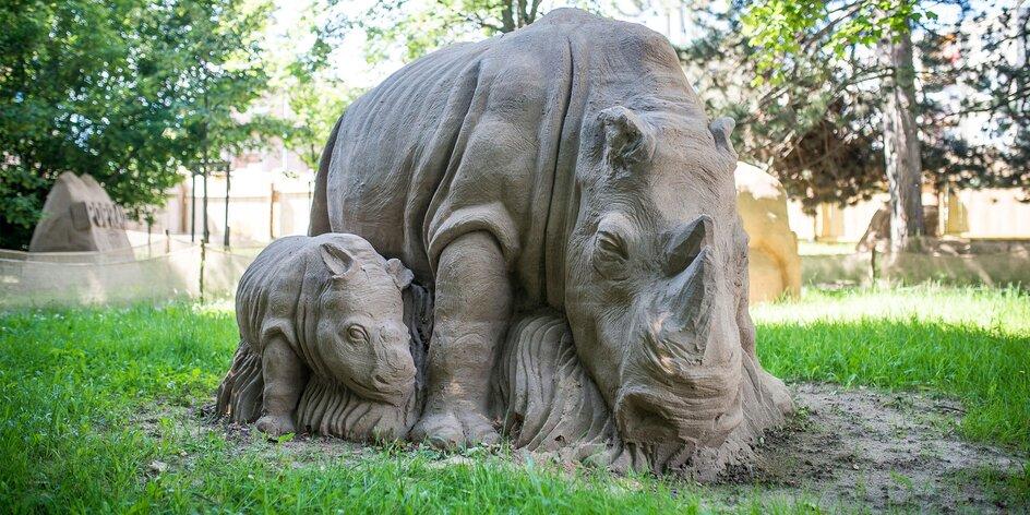Tip na netradičný výlet: Piesková zoo