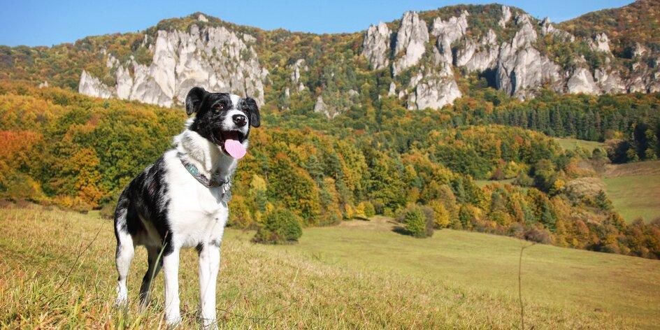 So psom na Súľovské skaly! Tina a Scotty v raji lezcov a milovníkov prírody.