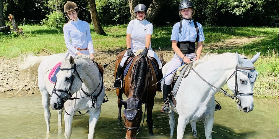 Profesionálne jazdecké kurzy pre deti a dospelých
