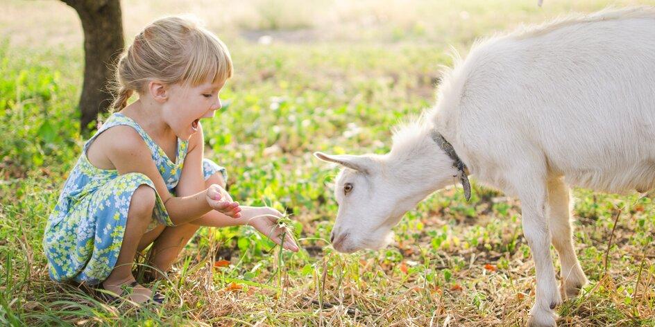 Vyrazte s deťmi na výlet za zvieratami! 43 fariem a mini zoo na Slovensku