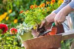 Flexibilná záhradná hadica vrátane poštovného
