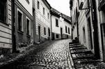 Adrenalín v bratislavských uliciach, aký ste ešte nezažili!
