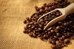 Degustácia 7 druhov kávy s ukážkou praženia kávy a malým darčekom!