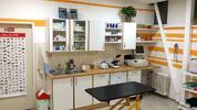 Starostlivosť o psíkov a mačičky na veterinárnej ambulancii MoniVET - dentálna…