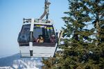 Celodenné skipasy na lyžovanie aj so servisom lyží a bobovaním v Snowparadise…