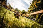 Štartovné na prekážkový beh Rugged Race Extreme