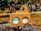Prvotriedne medy s prírodnými príchuťami zo slovenského včelárstva