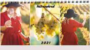 Stolový fotokalendár / týždenný / 29 x 13,5 cm