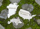 Drevená mapa sveta L