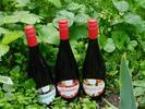 6 x 0,75 l Kartón ovocných vín (ríbezľa)